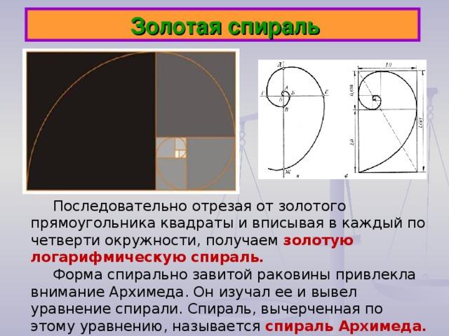 Золотая спираль Последовательно отрезая от золотого прямоугольника квадраты и вписывая в каждый по четверти окружности, получаем золотую логарифмическую спираль. Форма спирально завитой раковины привлекла внимание Архимеда. Он изучал ее и вывел уравнение спирали. Спираль, вычерченная по этому уравнению, называется спираль Архимеда.
