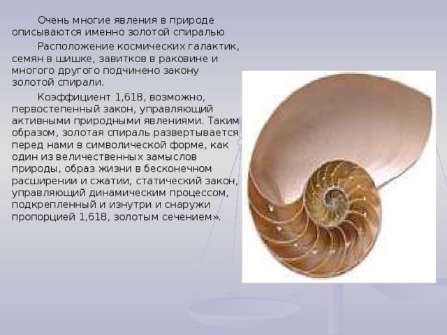 Очень многие явления в природе описываются именно золотой спиралью  Расположение космических галактик, семян в шишке, завитков в раковине и многого другого подчинено закону золотой спирали.  Коэффициент 1,618, возможно, первостепенный закон, управляющий активными природными явлениями. Таким образом, золотая спираль развертывается перед нами в символической форме, как один из величественных замыслов природы, образ жизни в бесконечном расширении и сжатии, статический закон, управляющий динамическим процессом, подкрепленный и изнутри и снаружи пропорцией 1,618, золотым сечением».