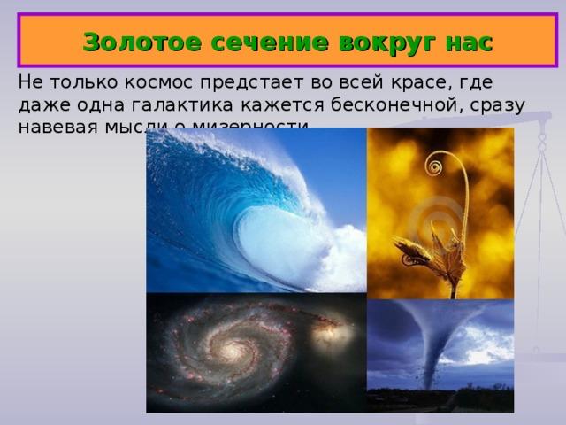Золотое сечение вокруг нас Не только космос предстает во всей красе, где даже одна галактика кажется бесконечной, сразу навевая мысли о мизерности...