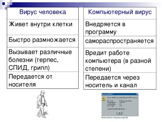 Вирус человека Компьютерный вирус Живет внутри клетки Внедряется в программу Быстро размножается самораспространяется Вызывает различные болезни (герпес, СПИД, грипп) Вредит работе компьютера (в разной степени) Передается от носителя Передается через носитель и канал