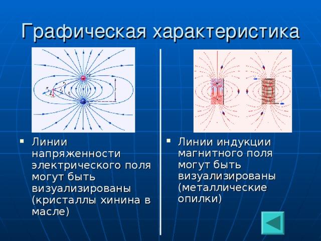 Линии индукции магнитного поля могут быть визуализированы (металлические опилки) Линии напряженности электрического поля могут быть визуализированы (кристаллы хинина в масле)