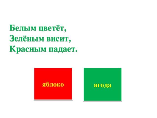 Белым цветёт,  Зелёным висит,  Красным падает.      яблоко ягода