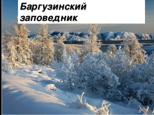 Баргузинский заповедник Было – 36 п. Отдали – ?, ½ часть