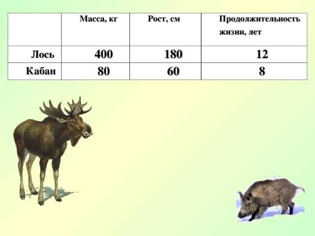 Масса, кг Лось Рост, см 400 Кабан Продолжительность жизни, лет 180 80 12 60 8