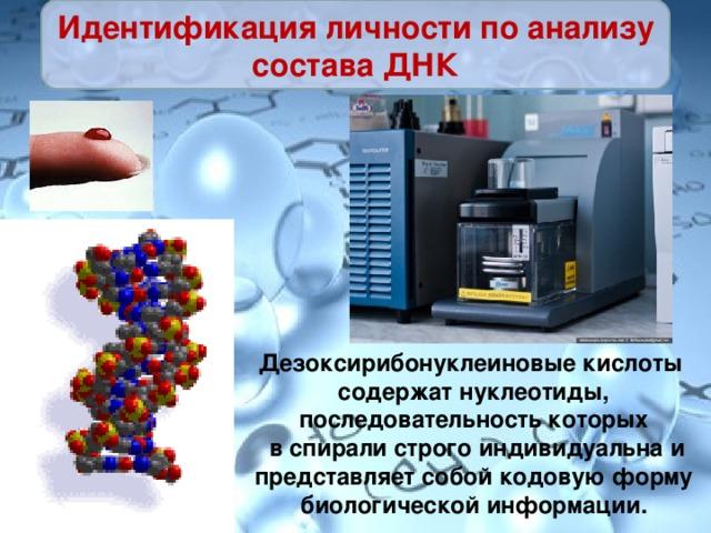 Идентификация личности по анализу состава ДНК Дезоксирибонуклеиновые кислоты содержат нуклеотиды, последовательность которых в спирали строго индивидуальна и представляет собой кодовую форму биологической информации.