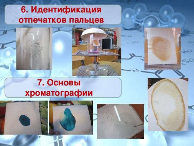 6. Идентификация отпечатков пальцев 7. Основы хроматографии