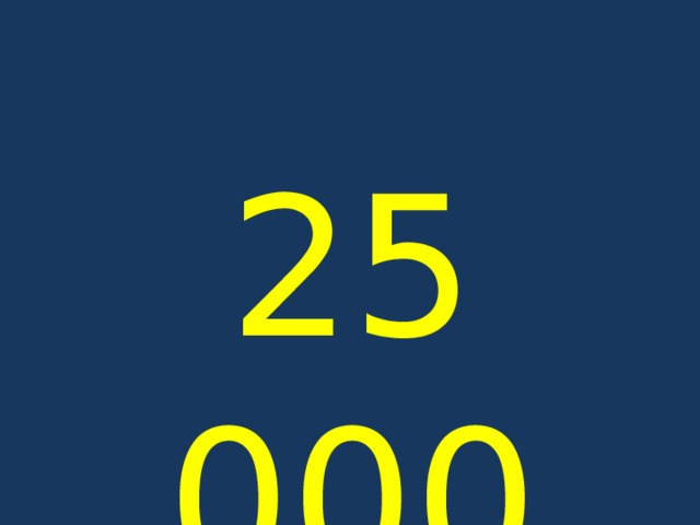 25 000