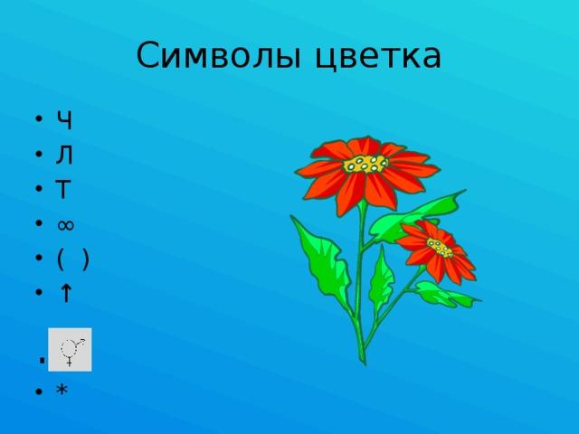 Символы цветка Ч Л Т ∞ ( ) ↑ .