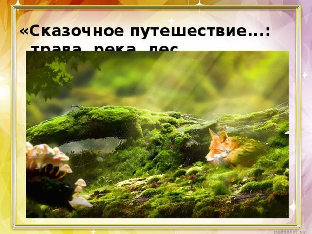 «Сказочное путешествие...: трава, река, лес ...