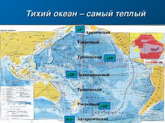 Тихий океан – самый теплый +5 о  Арктический  Умеренный   Тропический  +19 о Экваториальный   Тропический   Умеренный   Антарктический +28 о +10 о 0-1 о