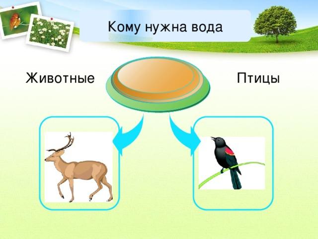 Кому нужна вода Животные Птицы