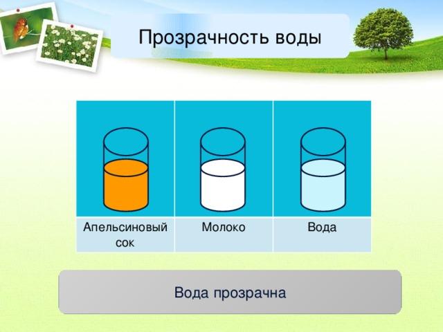 Прозрачность воды Апельсиновый сок Молоко Вода Вода прозрачна