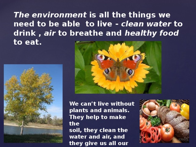The environment is all the things we need to be able to live - clean water to drink , air to breathe and healthy food to eat.    We can't live without plants and animals. They help to make the soil, they clean the water and air, and they give us all our food.