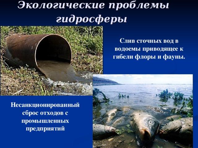 Экологические проблемы  гидросферы Слив сточных вод в водоемы приводящее к гибели флоры и фауны. Несанкционированный сброс отходов с промышленных предприятий