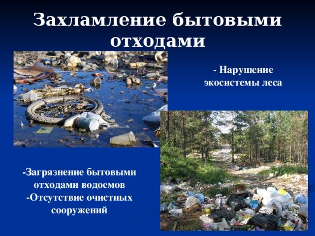 Захламление бытовыми отходами - Нарушение экосистемы леса -Загрязнение бытовыми отходами водоемов -Отсутствие очистных сооружений