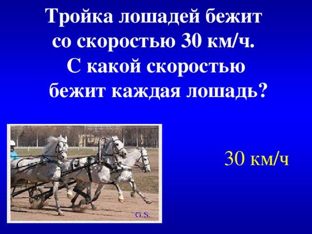 Тройка лошадей бежит со скоростью 30 км/ч. С какой скоростью  бежит каждая лошадь? 30 км/ч