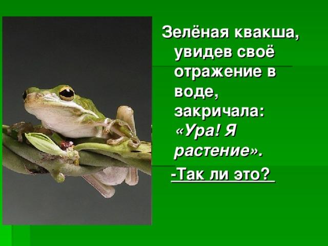 Зелёная квакша, увидев своё отражение в воде, закричала: «Ура! Я растение».  -Так ли это?