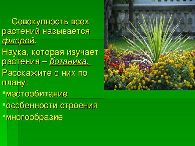Совокупность всех растений называется флорой .  Наука, которая изучает растения – ботаника . Расскажите о них по плану: