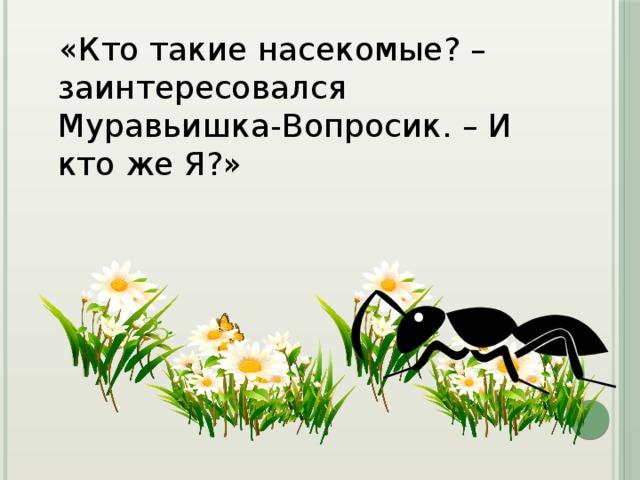 «Кто такие насекомые? – заинтересовался Муравьишка-Вопросик. – И кто же Я?»