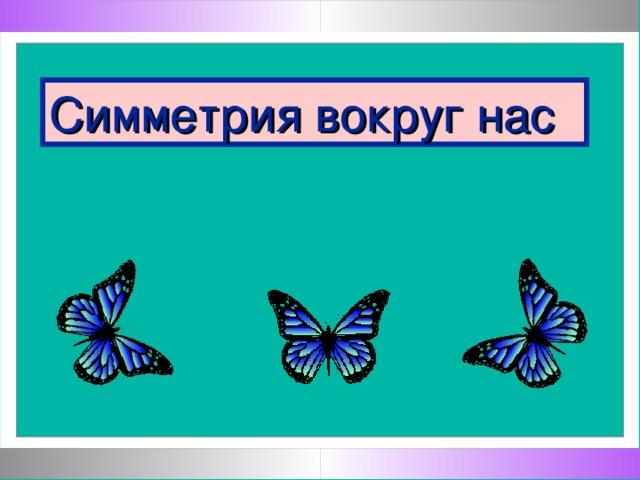 Мосина Ирина Георгиевна, Муниципальное общеобразовательное учреждение «Лицей № 6 имени З.Г. Серазетдиновой» города Оренбурга Симметрия вокруг нас