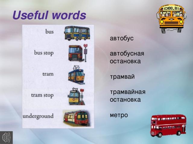 Useful words    автобус автобусная остановка трамвай трамвайная остановка метро