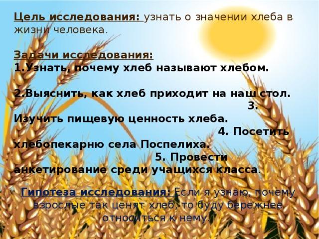 Цель исследования: узнать о значении хлеба в жизни человека.  Задачи исследования: Узнать, почему хлеб называют хлебом. 2.Выяснить, как хлеб приходит на наш стол. 3. Изучить пищевую ценность хлеба. 4. Посетить хлебопекарню села Поспелиха. 5. Провести анкетирование среди учащихся класса . Гипотеза исследования:  Если я узнаю, почему взрослые так ценят хлеб, то буду бережнее относиться к нему.