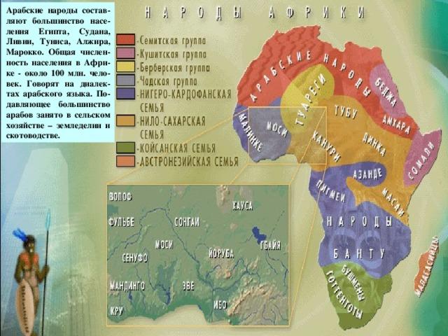 Арабские народы состав-ляют большинство насе-ления Египта, Судана, Ливии, Туниса, Алжира, Марокко. Общая числен-ность населения в Афри-ке - около 100 млн. чело-век. Говорят на диалек-тах арабского языка. По-давляющее большинство арабов занято в сельском хозяйстве – земледелии и скотоводстве. Арабские народы