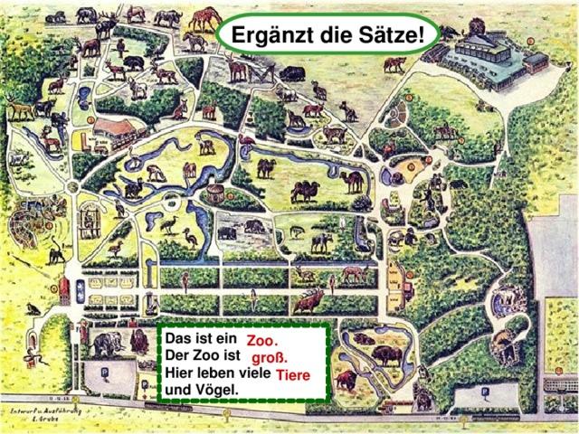 Ergänzt die Sätze! Das ist ein Zoo Der Zoo ist gro ß Hier leben viele Tiere und V ögel .  Zoo.  groß.  Tiere