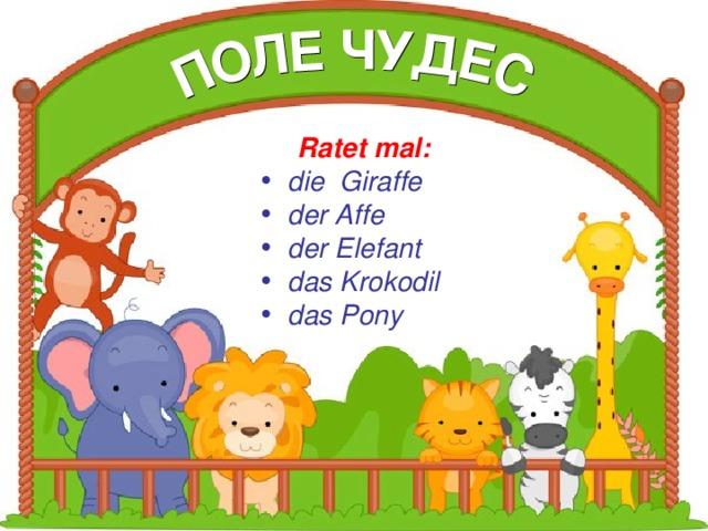 Ratet mal:  die Giraffe der Affe der Elefant das Krokodil das Pony Ratet mal: