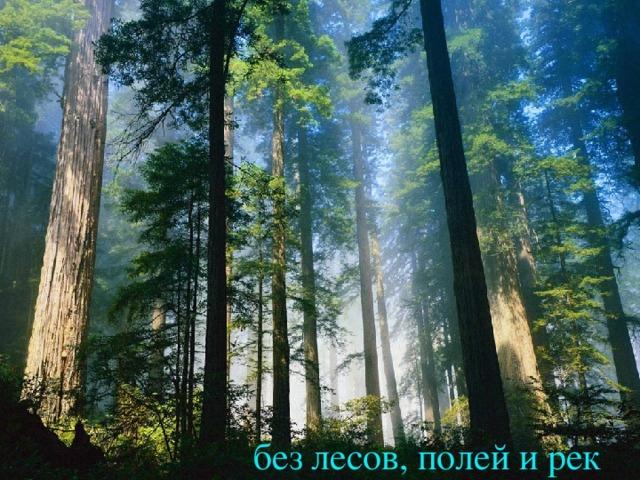 без лесов, полей и рек
