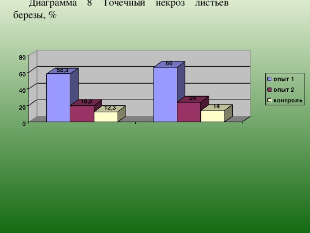 Диаграмма 8 Точечный некроз листьев березы, %