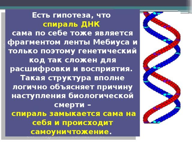 Есть гипотеза, что спираль ДНК сама по себе тоже является фрагментом ленты Мебиуса и только поэтому генетический код так сложен для расшифровки и восприятия. Такая структура вполне логично объясняет причину наступления биологической смерти –  спираль замыкается сама на себя и происходит самоуничтожение .
