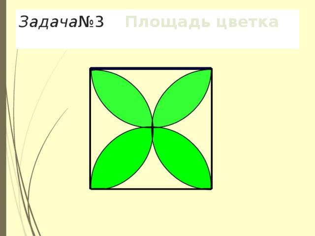 Задача №3 Площадь цветка
