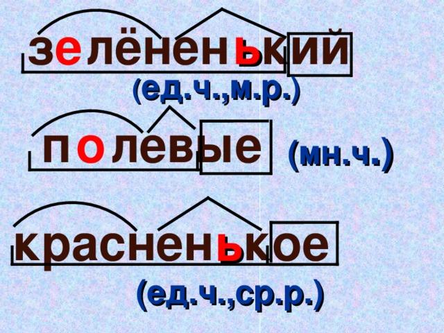кий лёнен е ь з ( ед.ч.,м.р. ) левые п о (мн.ч . ) кое краснен ь   (ед.ч.,ср.р.)