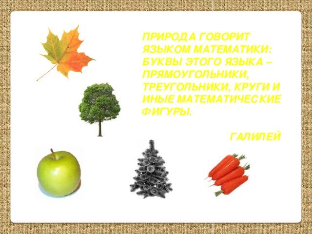 Природа говорит языком математики: буквы этого языка – прямоугольники, треугольники, круги и иные математические фигуры.   Галилей Г.