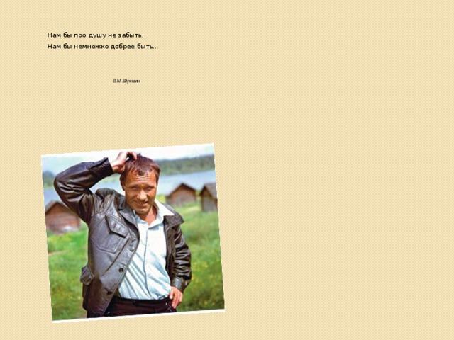 Нам бы про душу не забыть,  Нам бы немножко добрее быть…  В.М.Шукшин