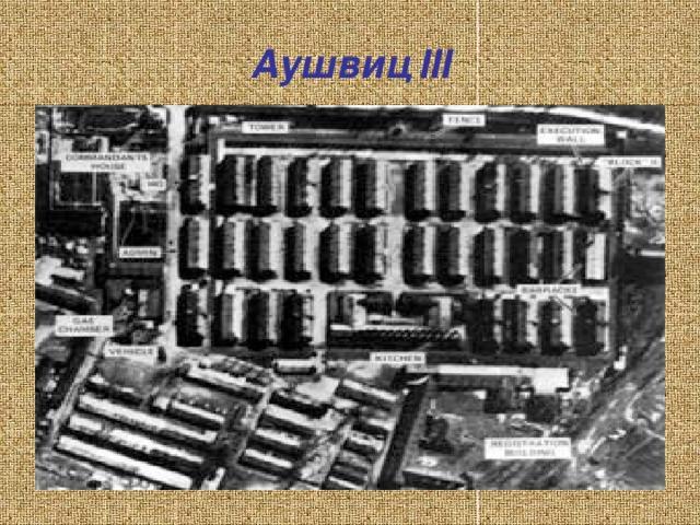 Аушвиц ІІІ