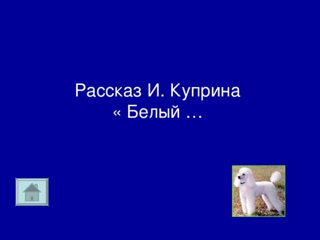 Рассказ И. Куприна  « Белый …