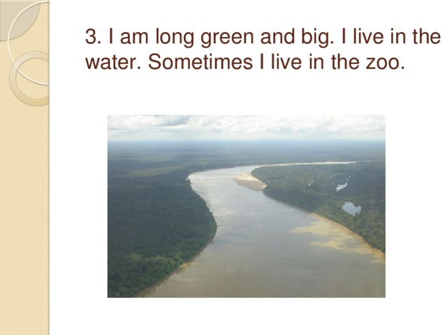 3. I am long green and big. I live in the water. Sometimes I live in the zoo.