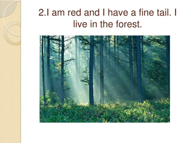 2.I am red and I have a fine tail. I live in the forest.