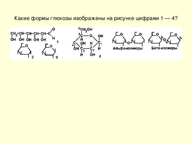 Какие формы глюкозы изображены на рисунке цифрами 1 — 4?