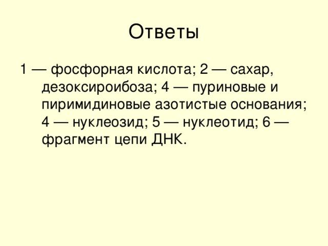 1 — фосфорная кислота; 2 — сахар, дезоксироибоза; 4 — пуриновые и пиримидиновые азотистые основания; 4 — нуклеозид; 5 — нуклеотид; 6 — фрагмент цепи ДНК.