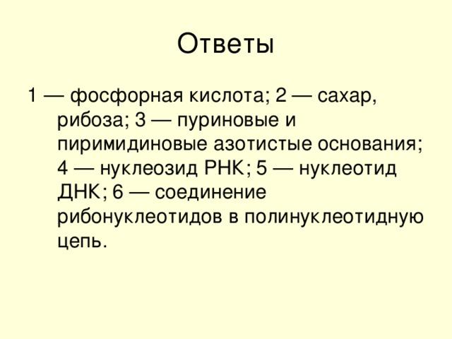 1 — фосфорная кислота; 2 — сахар, рибоза; 3 — пуриновые и пиримидиновые азотистые основания; 4 — нуклеозид РНК; 5 — нуклеотид ДНК; 6 — соединение рибонуклеотидов в полинуклеотидную цепь.