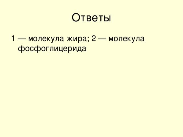 1 — молекула жира; 2 — молекула фосфоглицерида