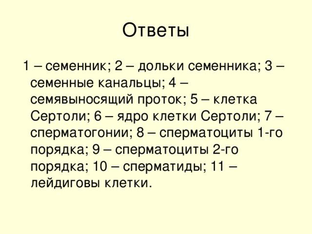1 – семенник; 2 – дольки семенника; 3 – семенные канальцы; 4 – семявыносящий проток; 5 – клетка Сертоли; 6 – ядро клетки Сертоли; 7 – сперматогонии; 8 – сперматоциты 1-го порядка; 9 – сперматоциты 2-го порядка; 10 – сперматиды; 11 – лейдиговы клетки.