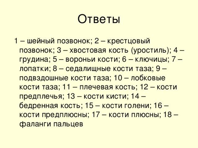 1 – шейный позвонок; 2 – крестцовый позвонок; 3 – хвостовая кость (уростиль); 4 – грудина; 5 – вороньи кости; 6 – ключицы; 7 – лопатки; 8 – седалищные кости таза; 9 – подвздошные кости таза; 10 – лобковые кости таза; 11 – плечевая кость; 12 – кости предплечья; 13 – кости кисти; 14 – бедренная кость; 15 – кости голени; 16 – кости предплюсны; 17 – кости плюсны; 18 – фаланги пальцев