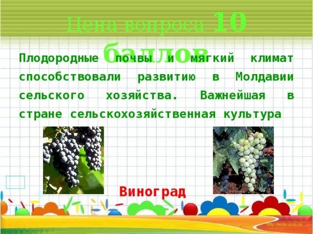 Цена вопроса 10 баллов Плодородные почвы и мягкий климат способствовали развитию в Молдавии сельского хозяйства. Важнейшая в стране сельскохозяйственная культура  * Виноград