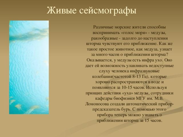 Живые сейсмографы Различные морские жители способны воспринимать «голос моря» - медузы, ракообразные - задолго до наступления шторма чувствуют его приближение. Как же такое простое животное, как медуза, узнает за много часов о приближении шторма? Оказывается, у медузы есть инфра ухо. Оно дает ей возможность улавливать недоступные слуху человека инфразвуковые колебания(частотой 8-13 Гц), которые хорошо распространяются в воде и появляются за 10-15 часов. Используя принцип действия «уха» медузы, сотрудники кафедры биофизики МГУ им. М.В. Ломоносова создали автоматический прибор-предсказатель бурь. С помощью этого прибора теперь можно узнавать о приближении шторма за 15 часов.