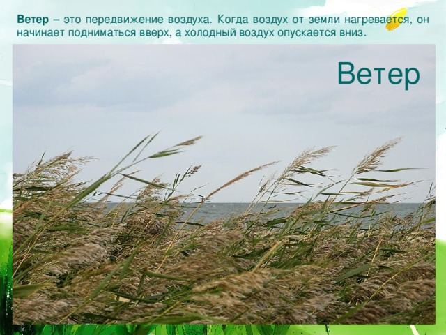Ветер – это передвижение воздуха. Когда воздух от земли нагревается, он начинает подниматься вверх, а холодный воздух опускается вниз.  Ветер