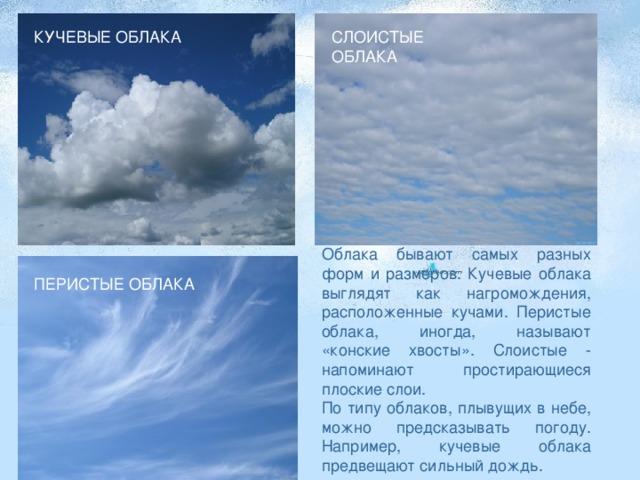КУЧЕВЫЕ ОБЛАКА СЛОИСТЫЕ ОБЛАКА Облака бывают самых разных форм и размеров. Кучевые облака выглядят как нагромождения, расположенные кучами. Перистые облака, иногда, называют «конские хвосты». Слоистые - напоминают простирающиеся плоские слои. По типу облаков, плывущих в небе, можно предсказывать погоду. Например, кучевые облака предвещают сильный дождь. ПЕРИСТЫЕ ОБЛАКА